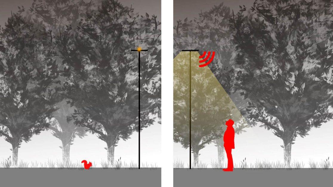 Paris-Saclay-schéma de la détection lumière